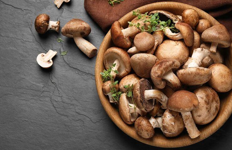 """Nấm - không chỉ là một món ăn mà còn là một """"thần dược"""" cho não bộ"""