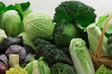 rau xanh có nhiều dưỡng chất tốt cho cơ thể