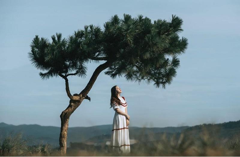 Khám phá đồi thiên Phúc Đức