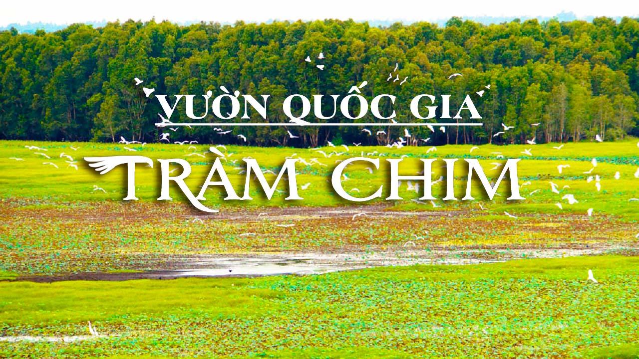 Vườn Quốc Gia Tràm Chim - Đồng Tháp