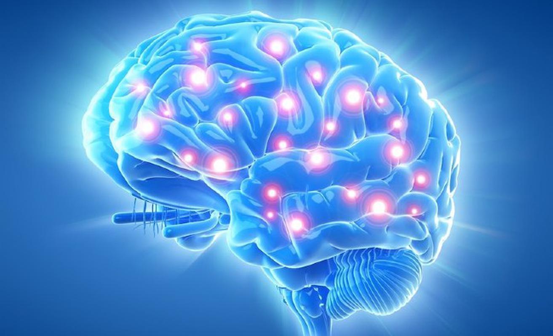 Giảm chức năng hoạt động của não