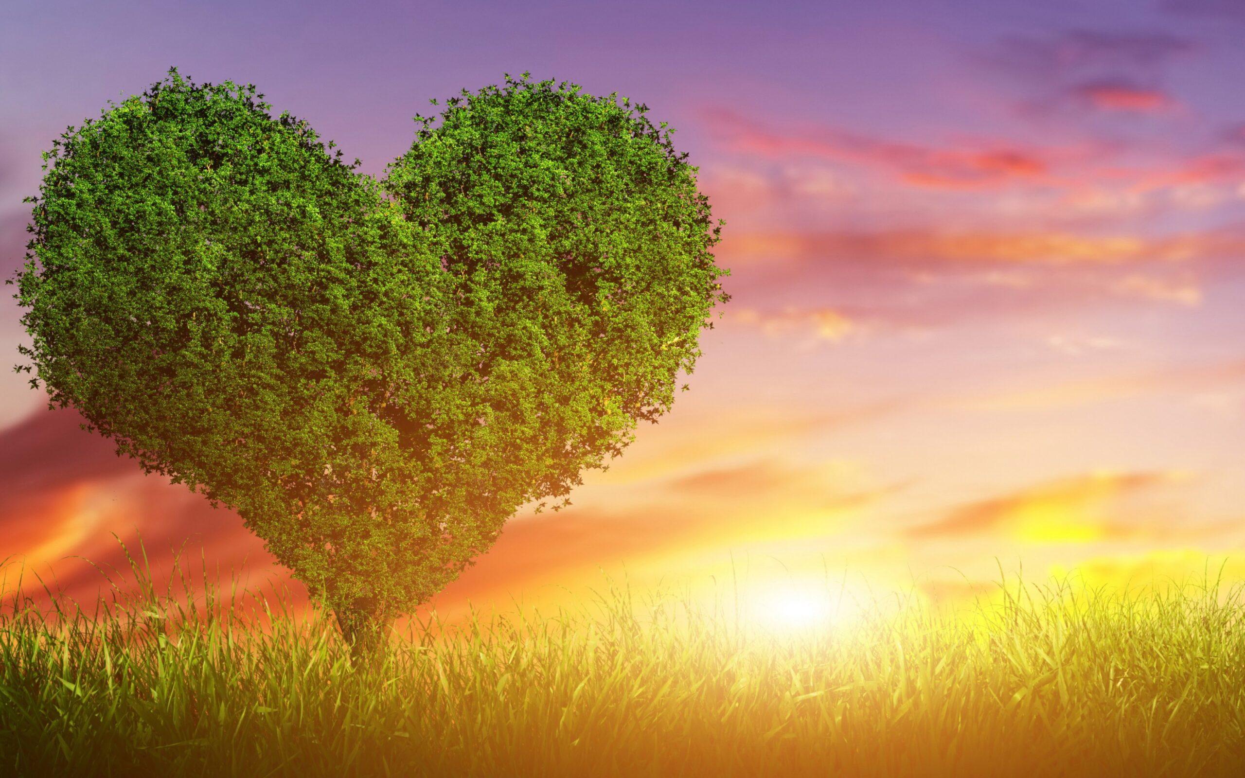 Nguyên tắc để hạnh phúc trong tình yêu